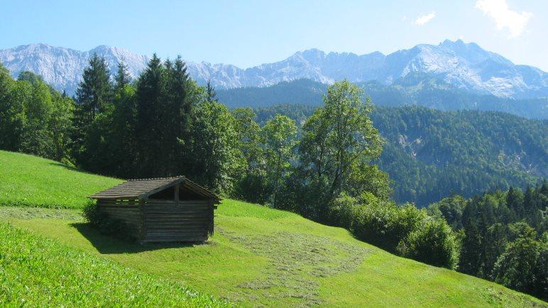 Schönes Panorama auf den Wiesen des Vordergrasecks, dabei steht der eigentliche Aufstieg zum Gipfel noch bevor!