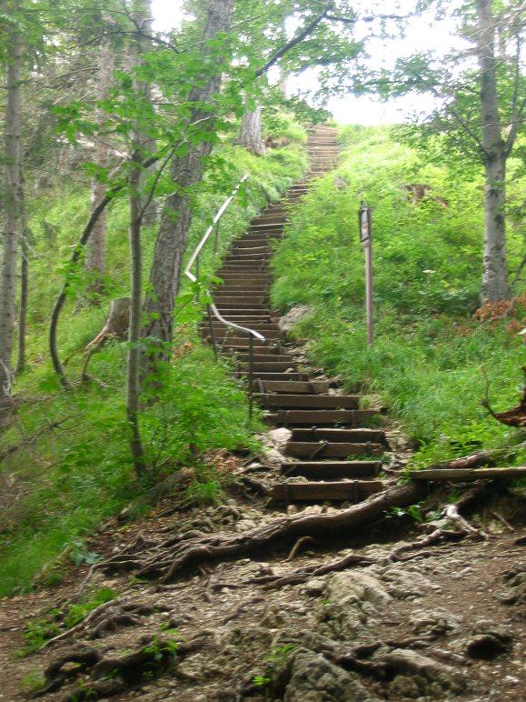 Die letzten Stufen, bevor das Riederstein-Kircherl erreicht ist