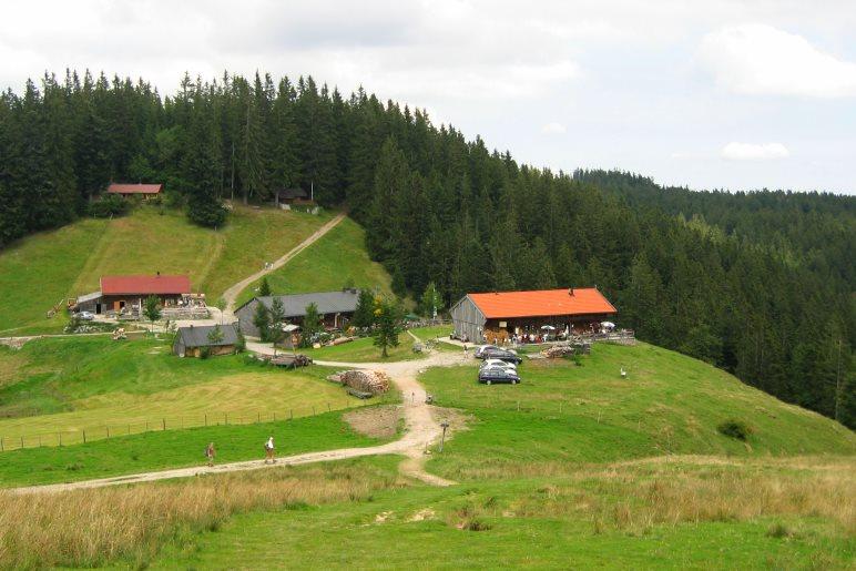Der Blick vom Gipfelkreuz der Gindelalmschneid hinunter auf die Gindelalm