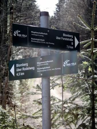 Jetzt muss man sich entscheiden: Soll man den langen Weg über die Fahrstraße oder den steileren Bergweg nehmen?