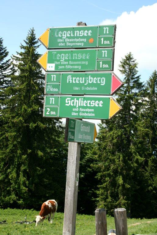 Große Auswahl: Zur Neureuth und wieder zurück ins Tal führen viele Wanderwege