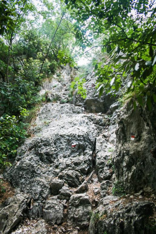 Die letzten Meter zum Gipfel erklettern wir über eine kleine Felsstufe