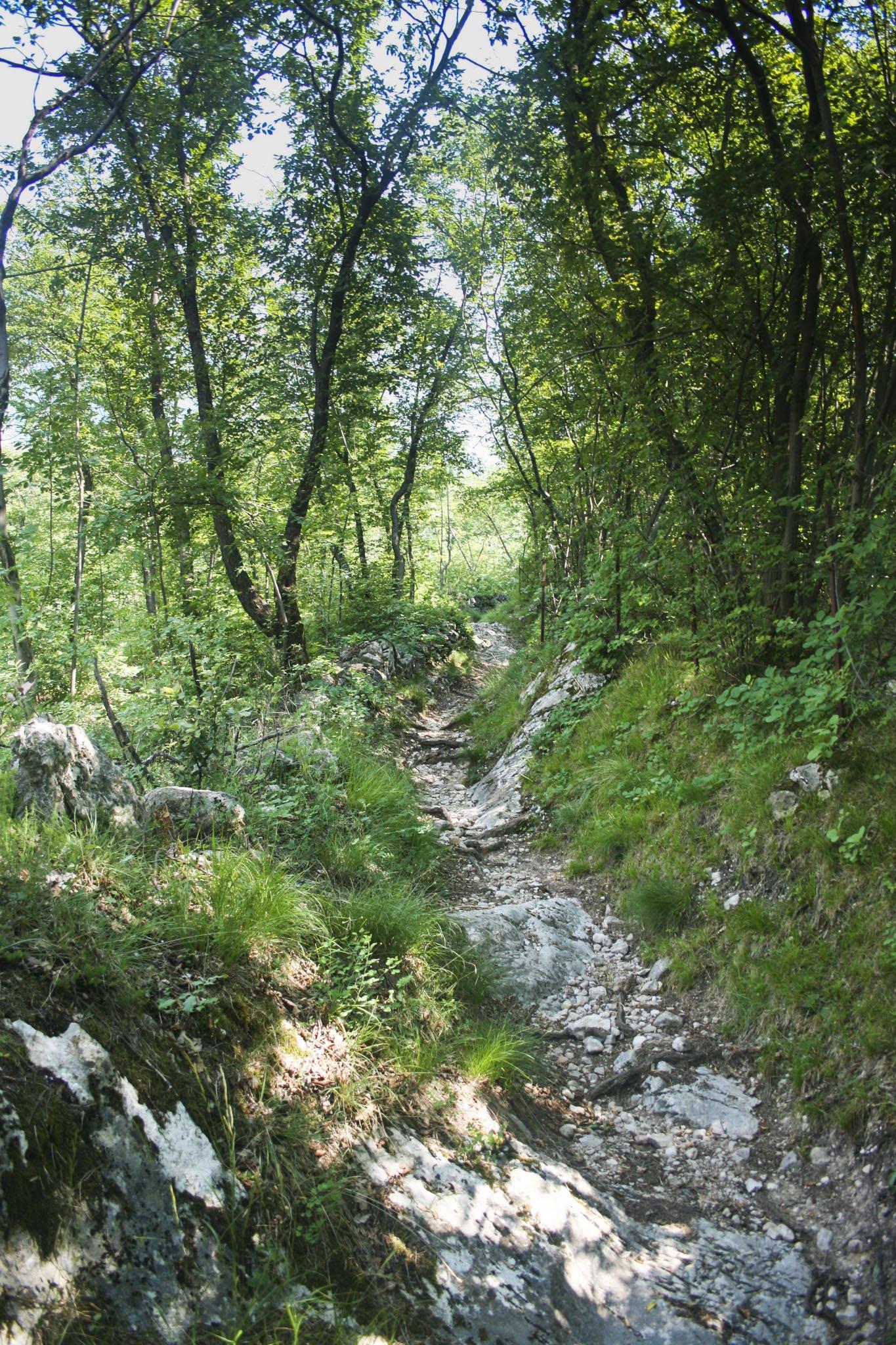 Ein schmaler Weg führt von der Madona zur Via Paier