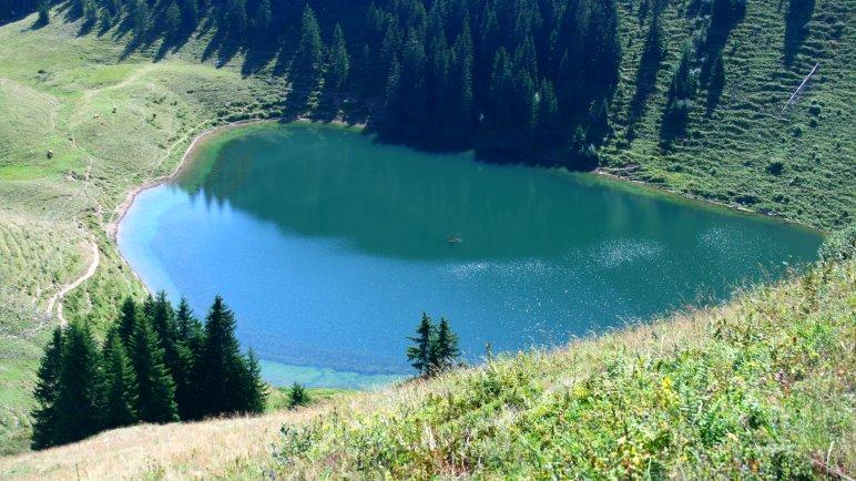 Im Abstieg vom Roßkopf sieht man auf den Grünsee hinab