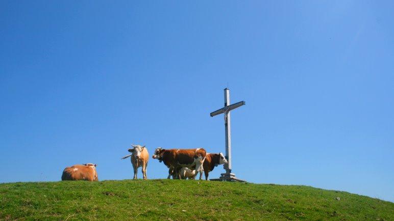 Am Roßkopf-Gipfel