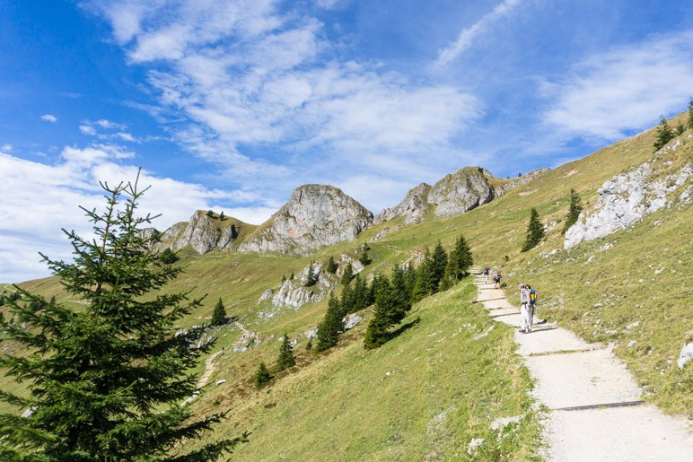 Der Gipfelweg zwischen Rotwand und Rotwandhaus