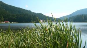 Am Ufer des Spitzingsees
