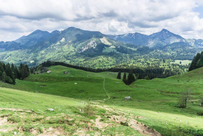 Ausblick Richtung Hochries und Spitzstein, oberhalb der Daffnerwaldalmen