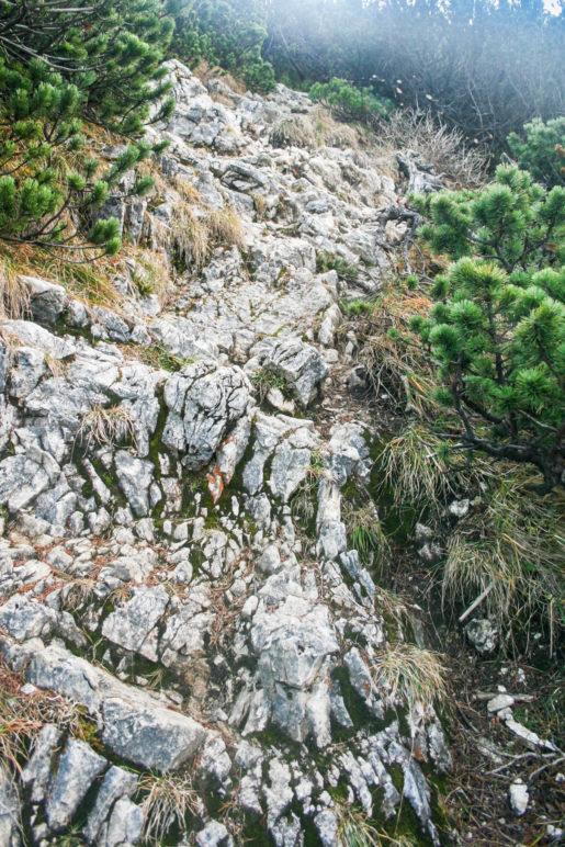 Felsiger Weg zum Gipfel der Hochplatte