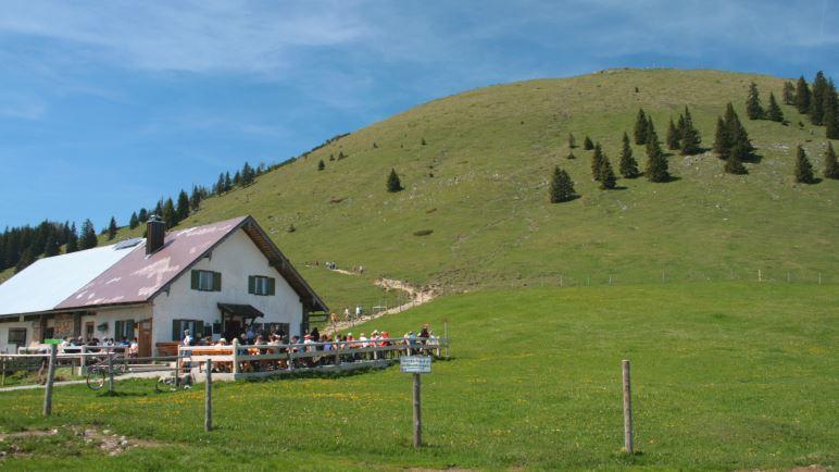 Die Jocheralm unterhalb des Jochberg-Gipfels