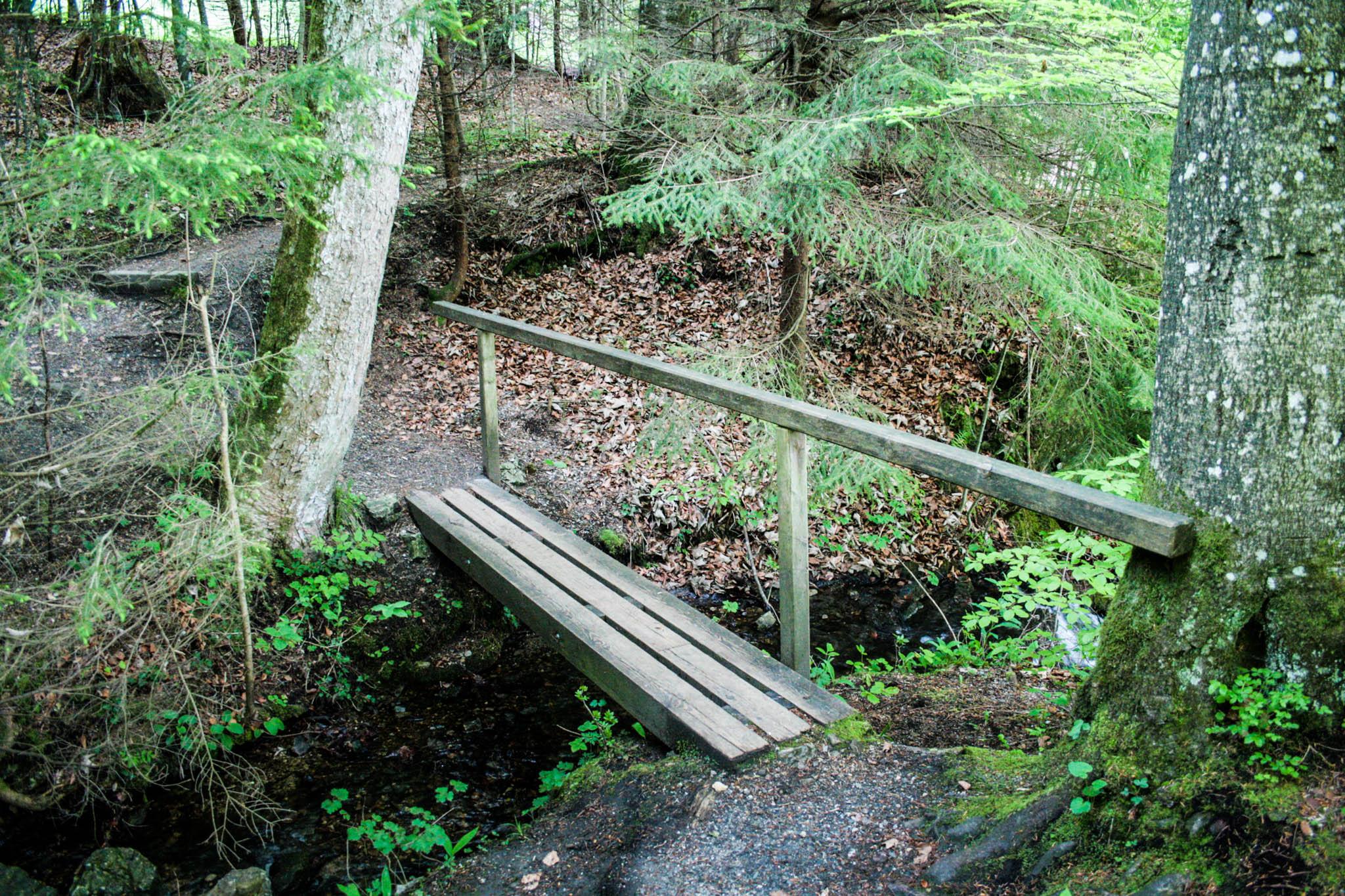 Eine kleine Brücke kurz vor der Burgruine Werdenfels