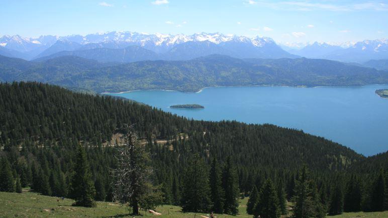 Blick vom Jochberg auf den Walchensee und die Alpen