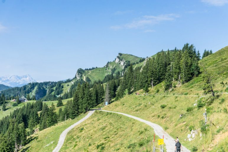 Unterwegs auf dem Brauneck Panoramaweg und dem kleinen Höhenweg