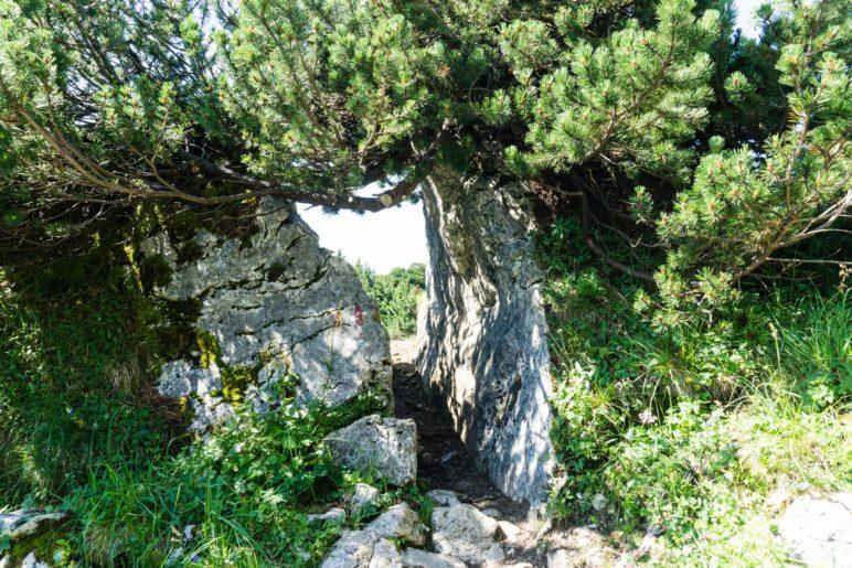 Ein steinernes Tor. Hier führt der Weg hindurch zum Abzweig Richtung Benediktenwand