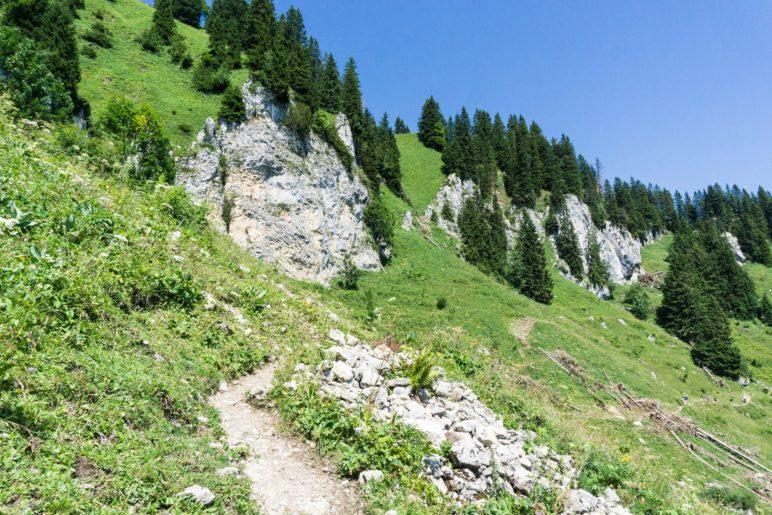 Auf dem schmalen Weg vom Gamsköpfl zur Tölzer Hütte