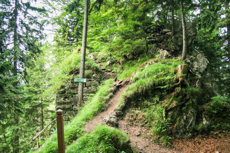 An der Ruine Hohenwaldeck