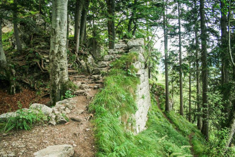 Mauer der Ruine Hohenwaldeck