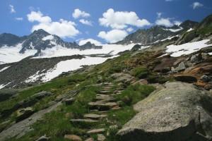 Auf dem Steinplattenweg geht es bergauf zur Hütte
