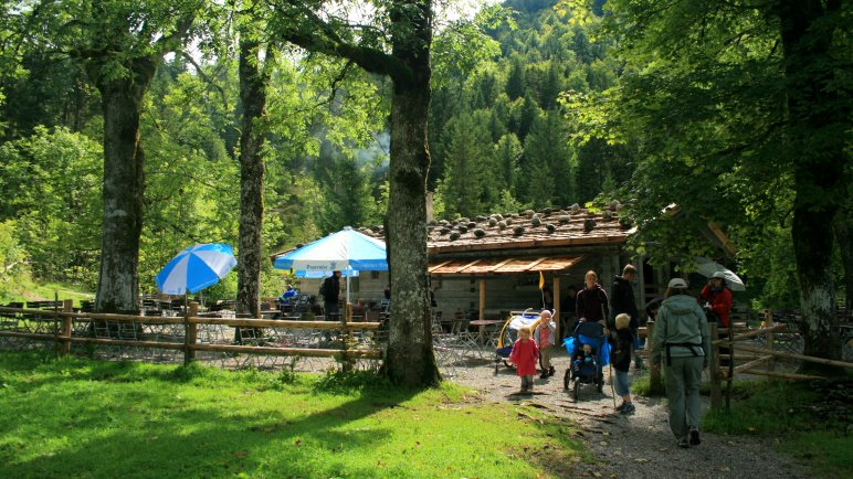 Die Siebenhüttenalm - Ideales Wanderziel für Familien