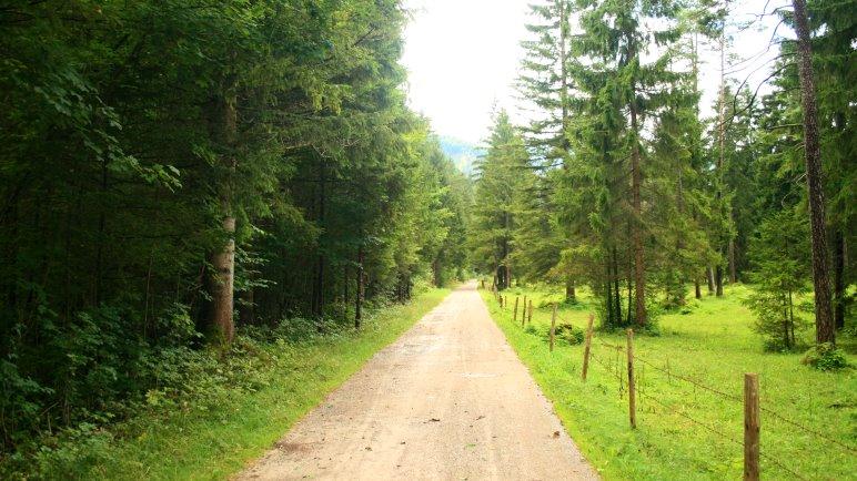 Der Wanderweg von Kreuth nach Wildbad Kreuth - nicht besonders abwechslungsreich