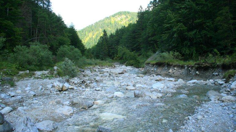 In der Wolfsschlucht führt der Wanderweg durch den Bach
