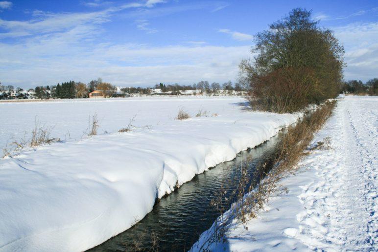 Winter im Schwabener Moos