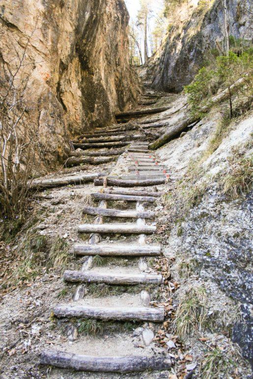 Wilde Stufen führen bergab zum Sparchenbach