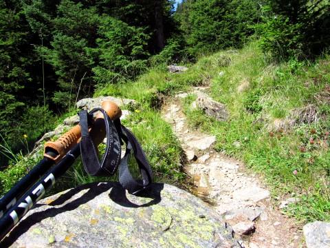 Ein guter Rastplatz: Sitzfelsen im Wald, trotzdem schön sonnig