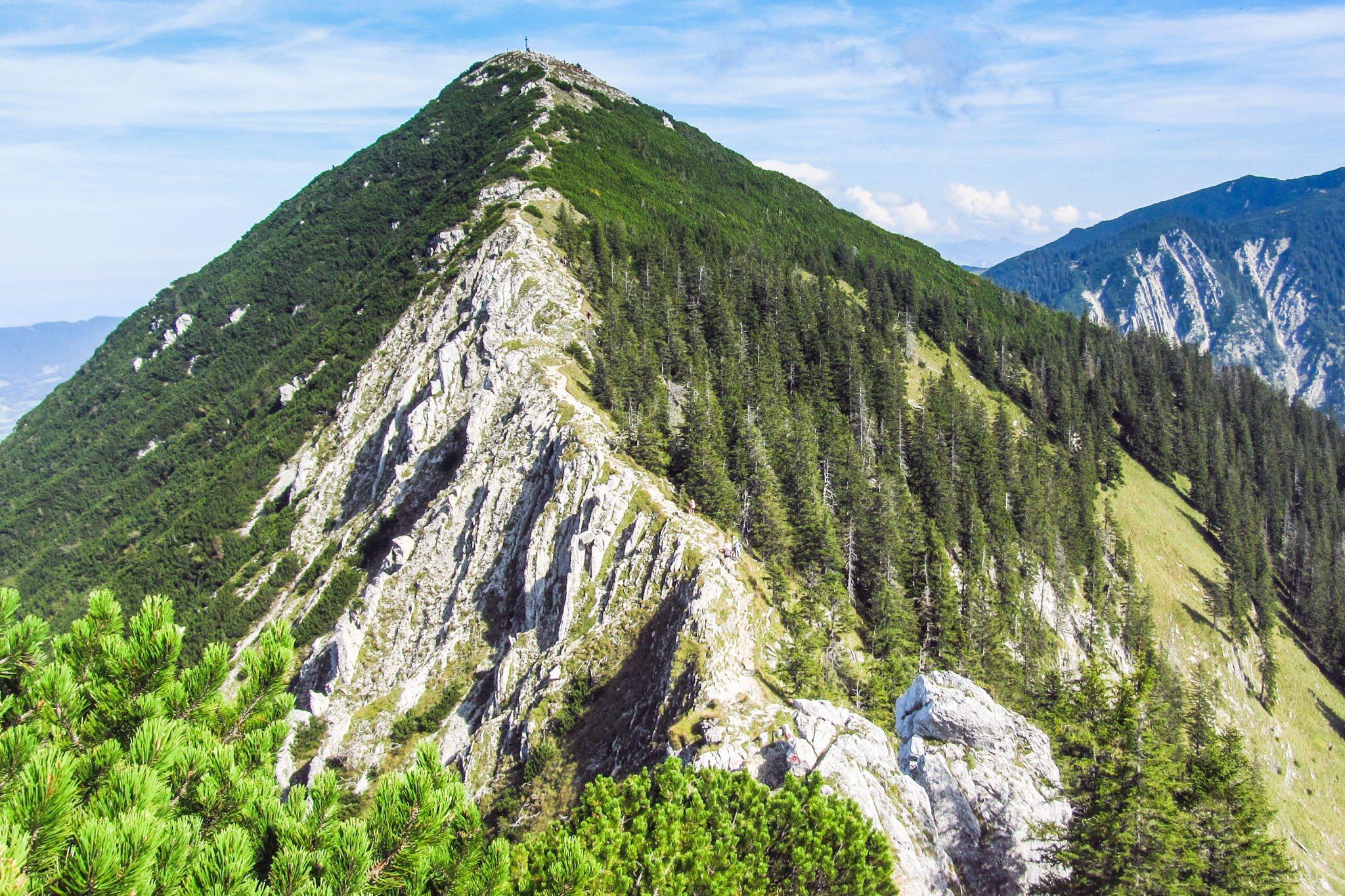 Blick zurück auf Gratweg und Brecherspitz