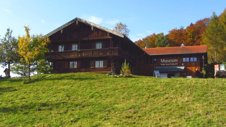 Das Museum Wald und Umwelt im alten Bauernhaus auf der Ludwigshöhe