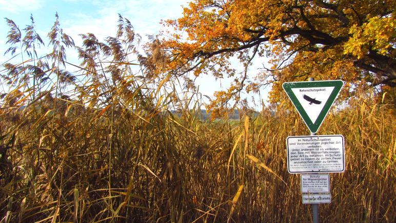 Eine Wanderung im Naturschutzgebiet Egglburger See und Ebersberger Weiherkette