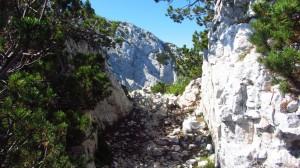 Weisser Felsweg auf dem Weg unterhalb der Cima Longino