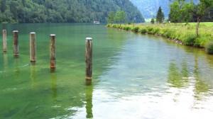 Am Königssee