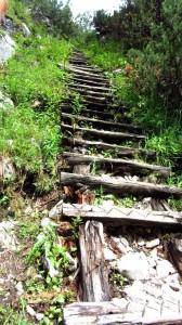 Über diese morsche Leiter führt der Wanderweg bergab