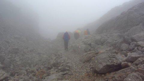 Nebelwandern