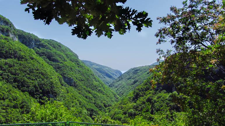 Blick in das nahezu vollständig bewaldete Tal