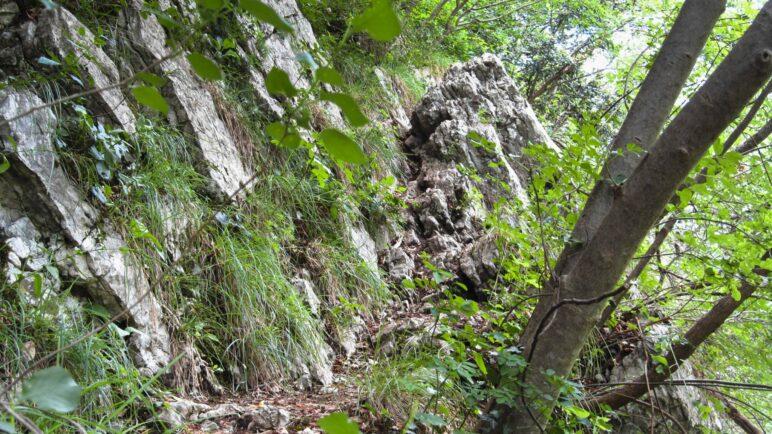 Schmal, steil und teilweise felsig und ausgesetzt ist der Weg auf den Monte Colt
