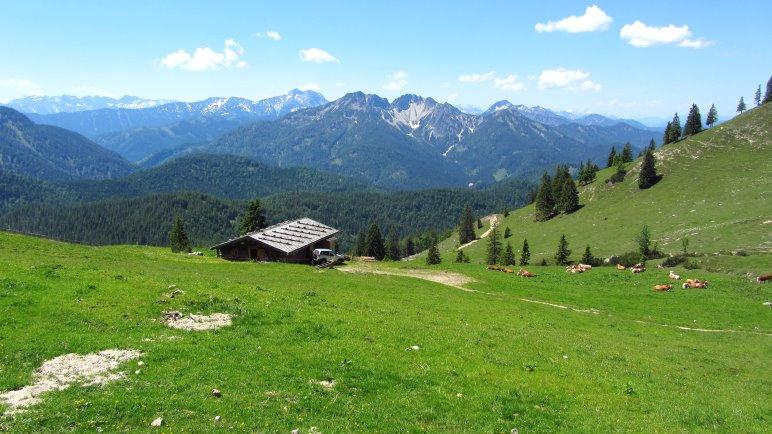 Weiter Blick über die Kümpflalm hinweg auf die Berge