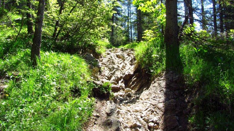 Ein steiler, steiniger Pfad