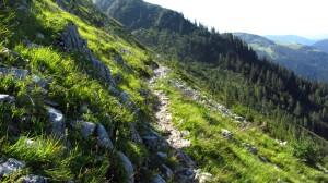 Meistens ist der Dachstein-Rundwanderweg am Gosaukamm so schmal wie hier