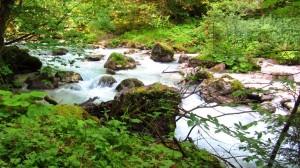 Sehr malerisch fließt der Hammersbach zwischen den Felsen hindurch.
