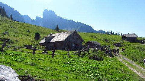 Die Stuhlalm am Austriaweg