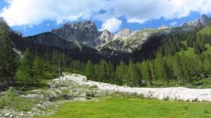 Wieder im Talboden, nur wenige Minuten von der Hofalm entfernt