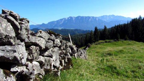 Eine Trockenmauer begrenzt die Schafweide an der Bubenau-Alm