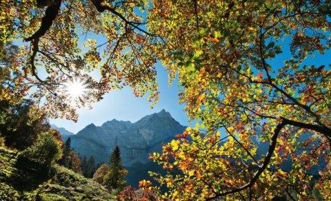 Das ideale Revier für Herbstfotos: Der Große Ahornboden - Foto: Heinz Zak