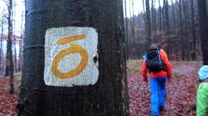 Hier geht's lang - das Zeichen des Hochrhöner Premium-Wanderweges