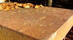 Eine rostige Eisenplatte und Herbstlaub - Kunst und Natur