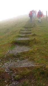 Die Stufen, den Pferdskopf hinauf