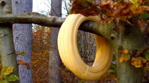 Die Ringe sind auf dem gesamten Weg durch den Wald verteilt