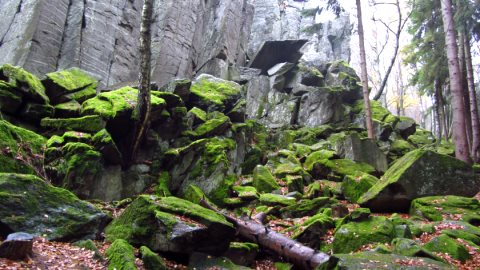 Wilde Felsen im Wald - die Steinwand
